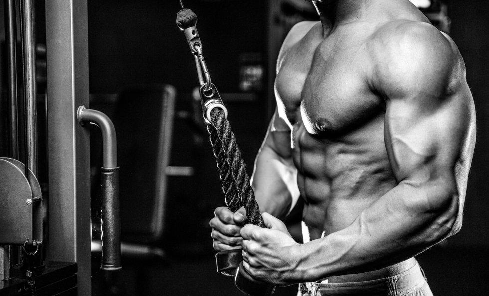 triceps og biceps øvelser